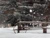 snowy northern michigan